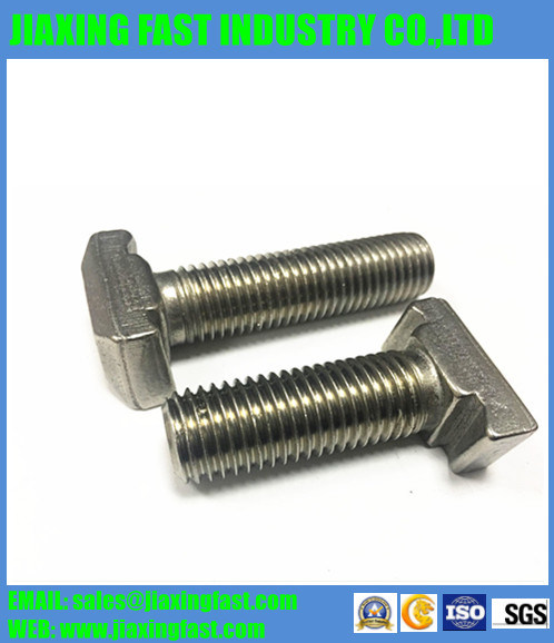 Stainless Steel/ Carbon Steel T Bolt / Tee Bolt / Hammer Head Bolt / Square Head Bolt