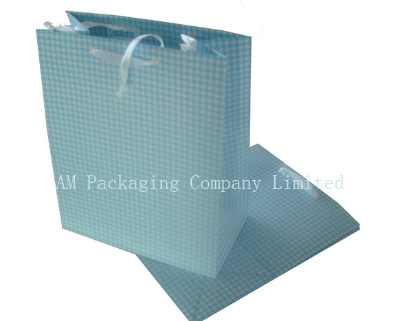 Gift Paper Bag, Shopping Bag, Carrier Bag (002)