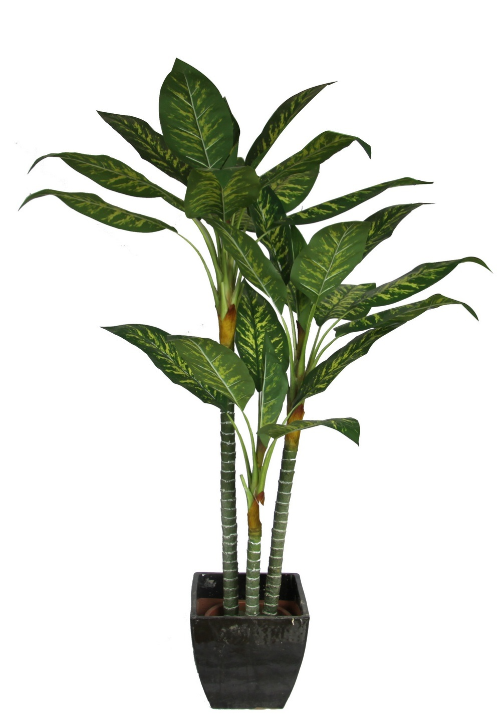 China artificial dieffenbachia plant imitated houseplant for House plants