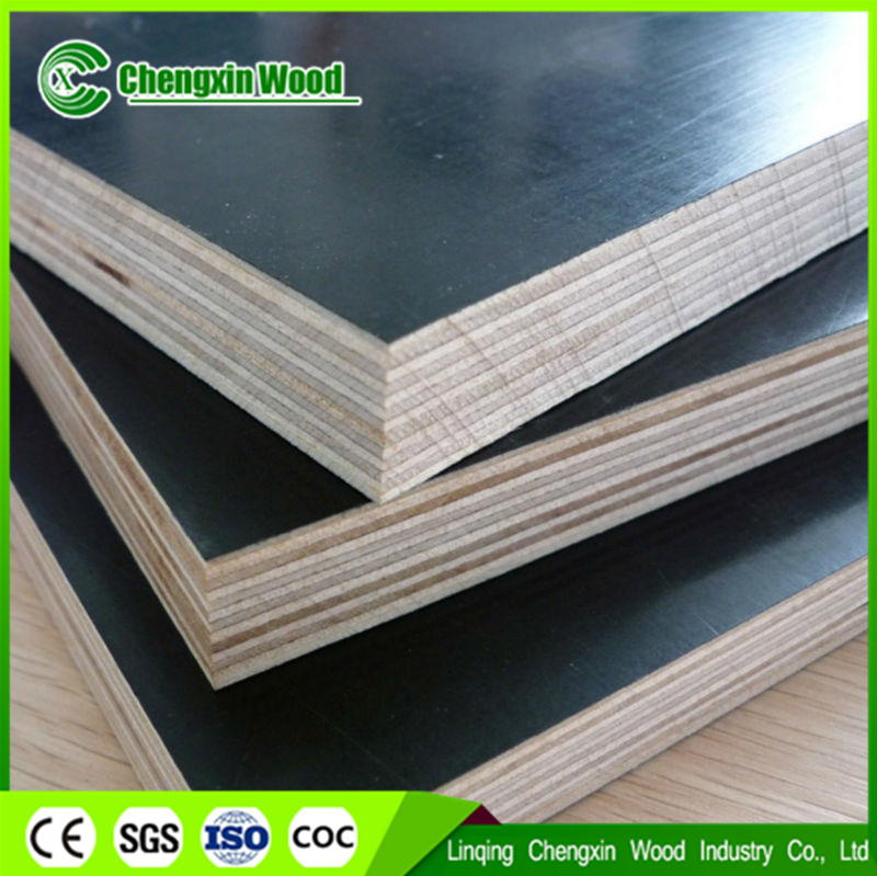12mm Construction Plywood Film Faced Plywood