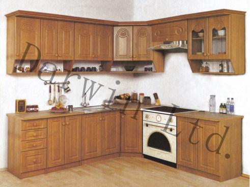 China New Style Modern Wood Kitchen Cabinet SV3C005 Photos