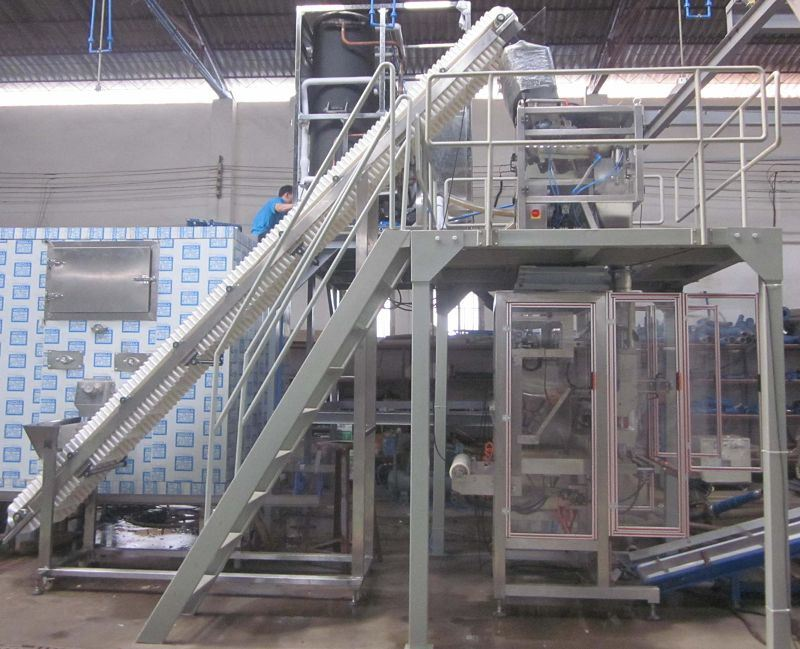 Automatic Ice Packing Machine (VFS7300)