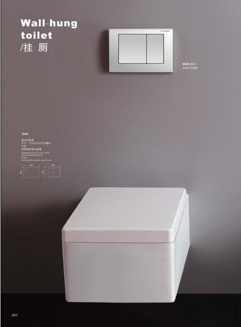 Stable Washdown Wall Hung Toilet (DS1044)