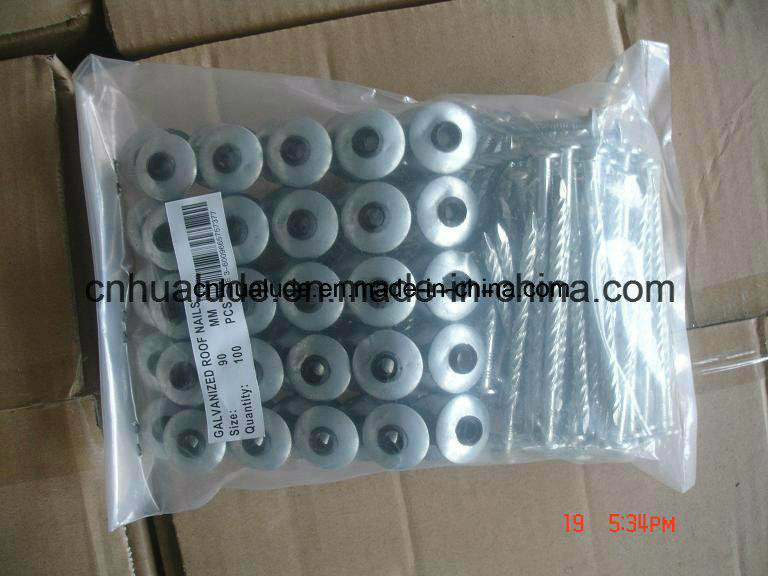 Galvanized Roofing Screw with Washer/ Roofing Nail with Washer