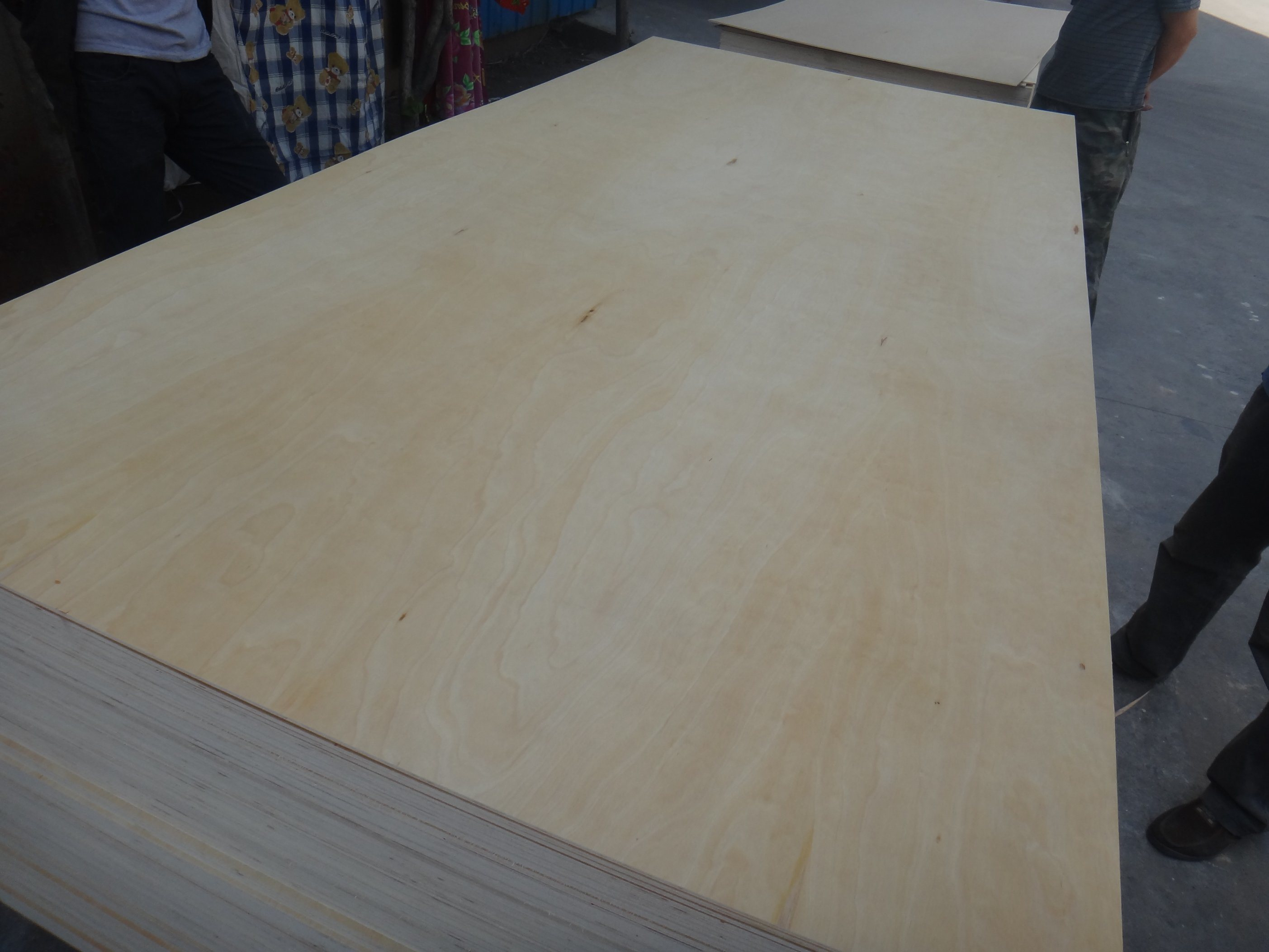 Birch Face Combi Core Plywood