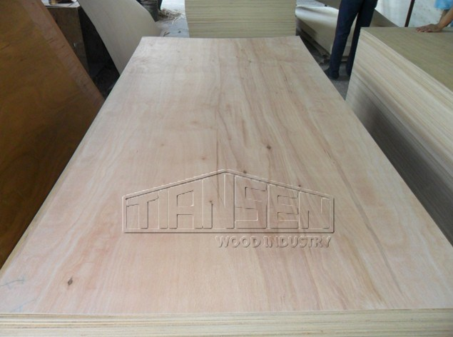Commercial Plywood -Pencil Cender Plywood 18mm (PO-001)