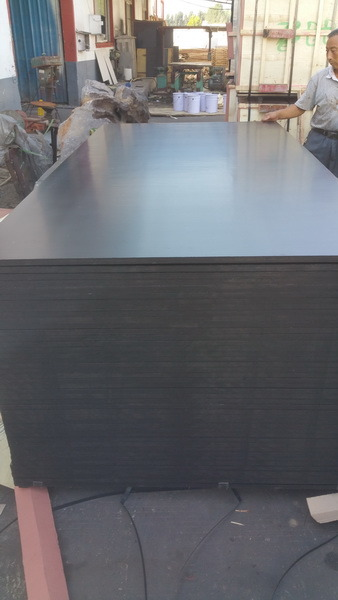 Brown Poplar Core Film Faced Plywood