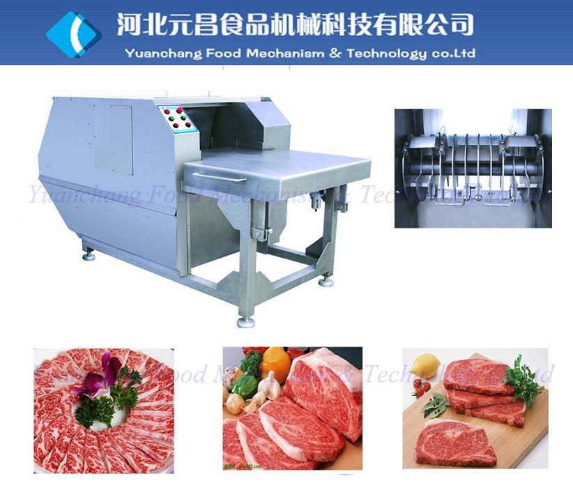 2013 Frozen Meat Slicer Qpj-2000