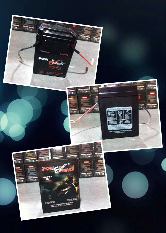 Tl2.5 12V2.5ah Sealed Maintenance Free Lead Acid Factory Activated Motorcycle Battery