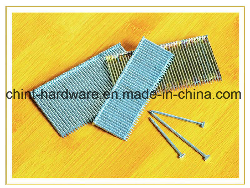 Galvanized Steel Strip Brad Nails (ST Nails) for Pneumatic Guns