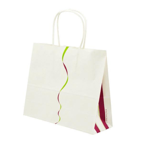 Custom Printed Paper Gift Packaging Bag (OEM-PB020)