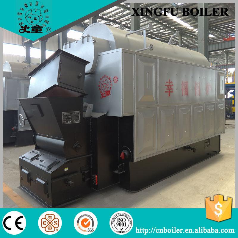 Dzl Coal Biomass Steam Boiler