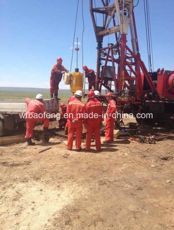 Coalbed Methane Downhole Screw Pump Well Pump Ground Driving Motor
