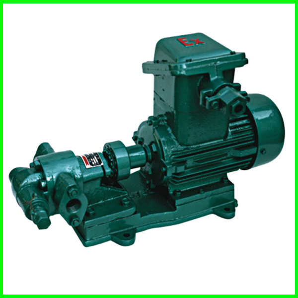 Gear Oil Pump with Oil Transfer Gear Pump