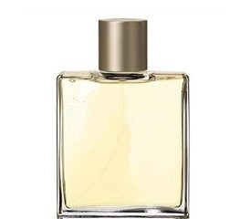 Bottle for Perfume with Economic Price