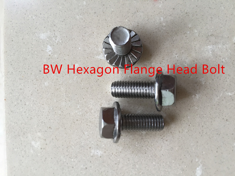 Hexagon Flange Head Bolt