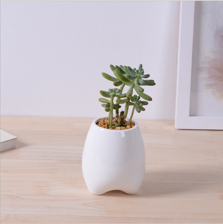 Ivory Creative Personality Fashion Ceramic Flower Pot