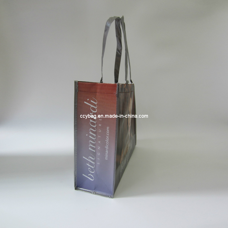 Non Woven Tote Bags for Shopping (LNWB04)