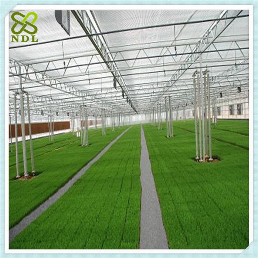 Plastic PC Sheet Cover Green House
