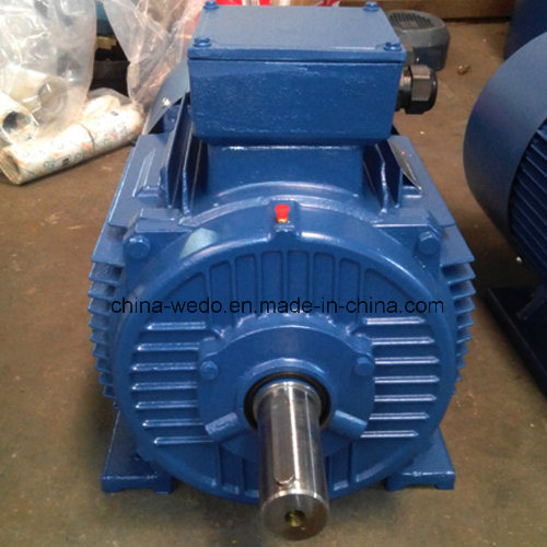 Y2 Series Cast Iron Three-Phase Asynchronous Induction Electric Motor with CE