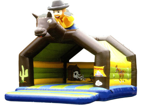 Giant Inflatable Bouncer with Cartoon Character
