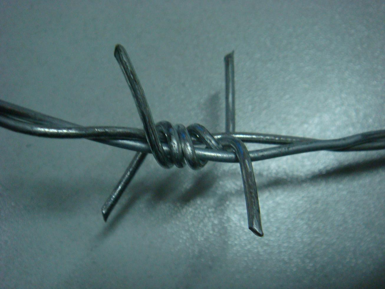 Hotsale Galvanized Razor Barbed Wire