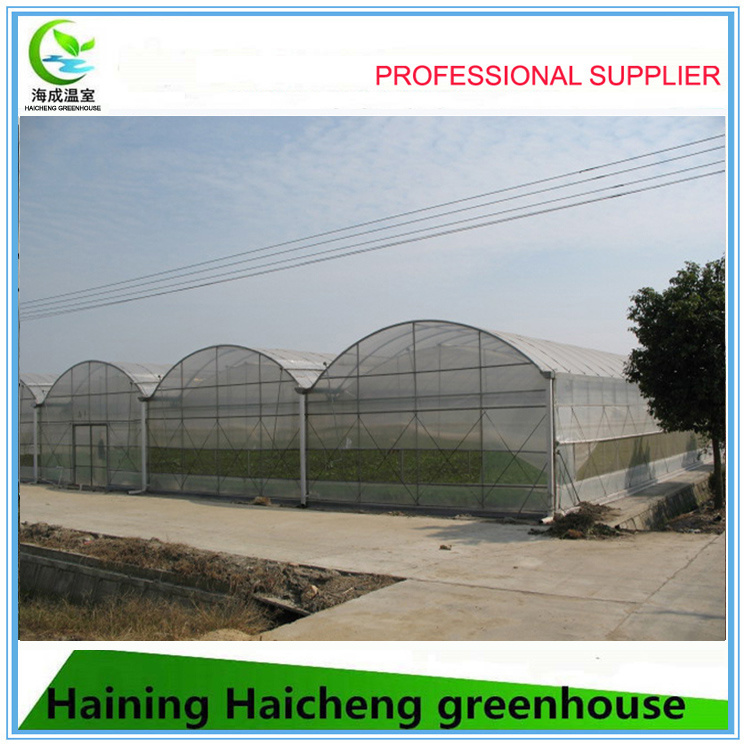 EU Model Single Layer Film Greenhouse for Sale