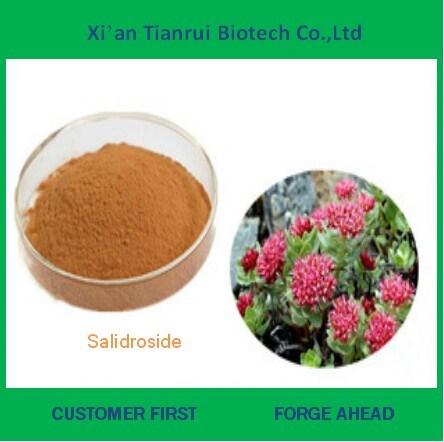 Factory Supply Natural Salidroside Powder
