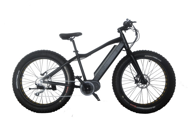 Fat Electric Bike,