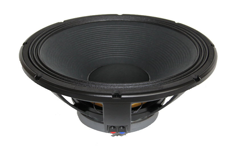 Professional Stage 18 Inch Rcf PA Subwoofer Speaker with 1000W RMS
