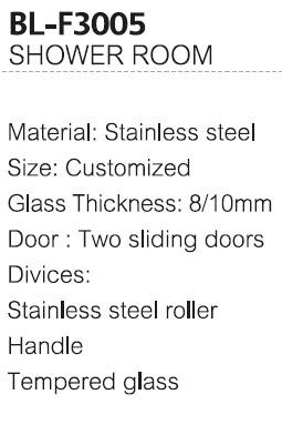 Two Sliding Doors Steel Material Shower Room (BL-F3005)