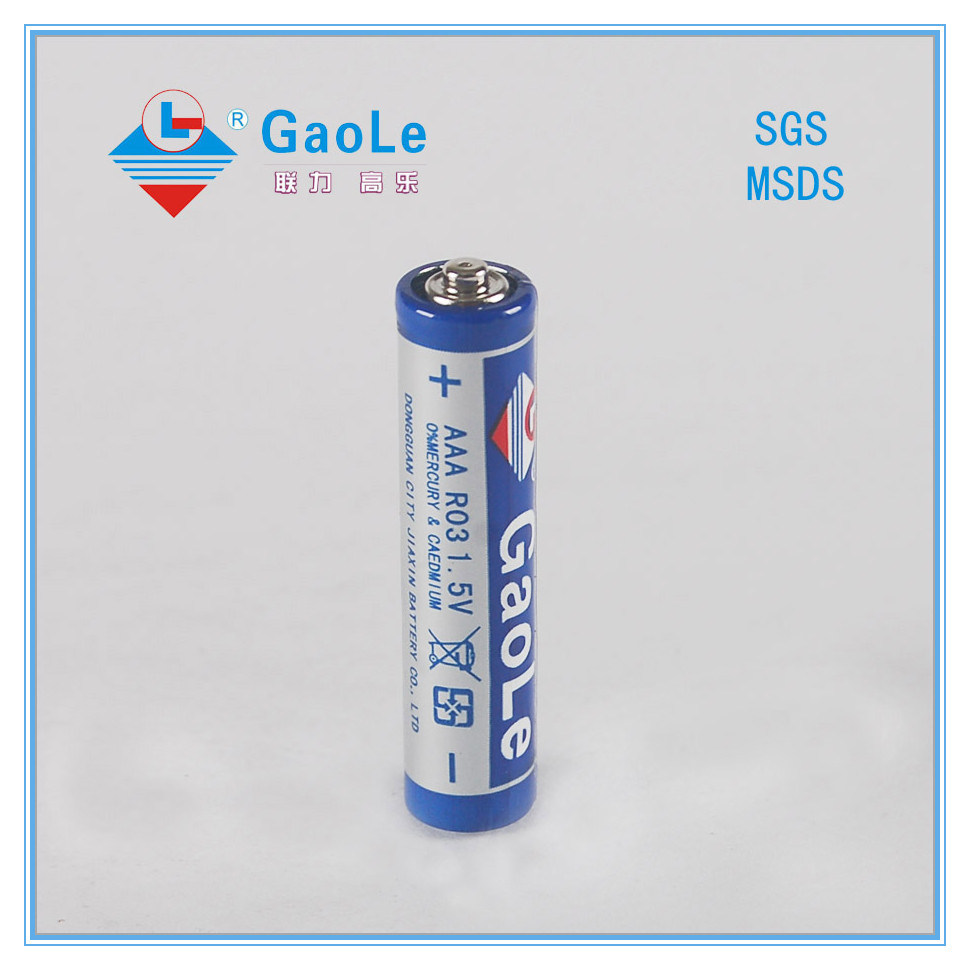 Carbon Zinc R03p AAA Battery (1PCS/shrink)