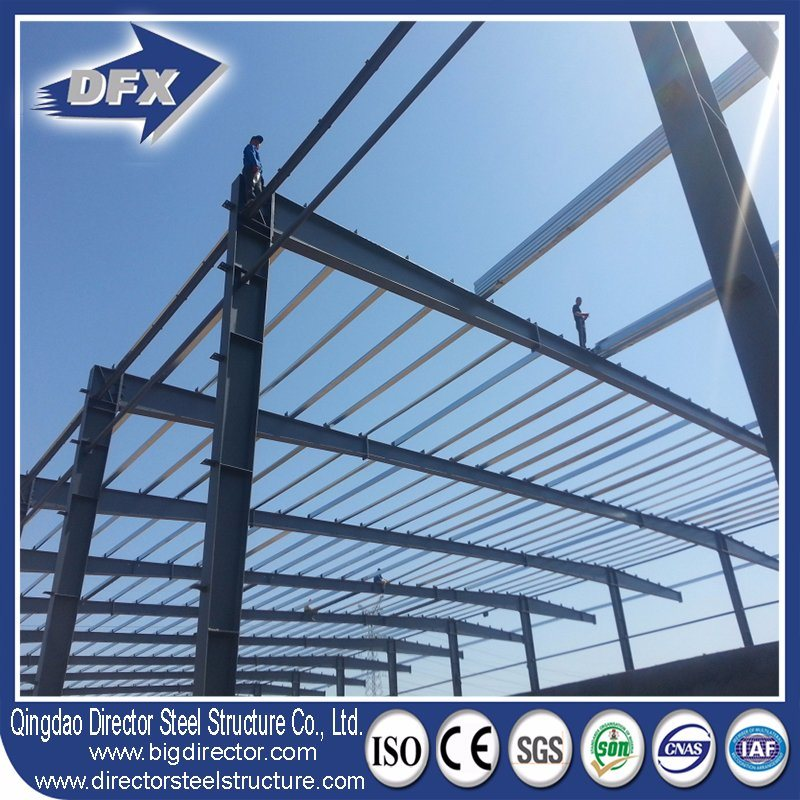 Lightweight Steel Construction/Processing Plant /Metal Workshop