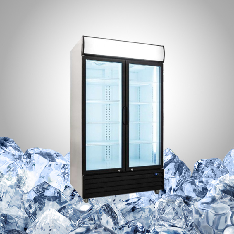 Commercial Fridge with Double Hinged Glass Door