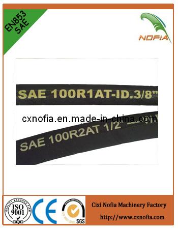 Industrial Steel Wire Braided Hydraulic Hose (R5)