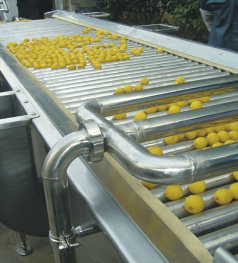 Fruit Fresh Fruits Strawberry Buleberry Paste Jam Production Line