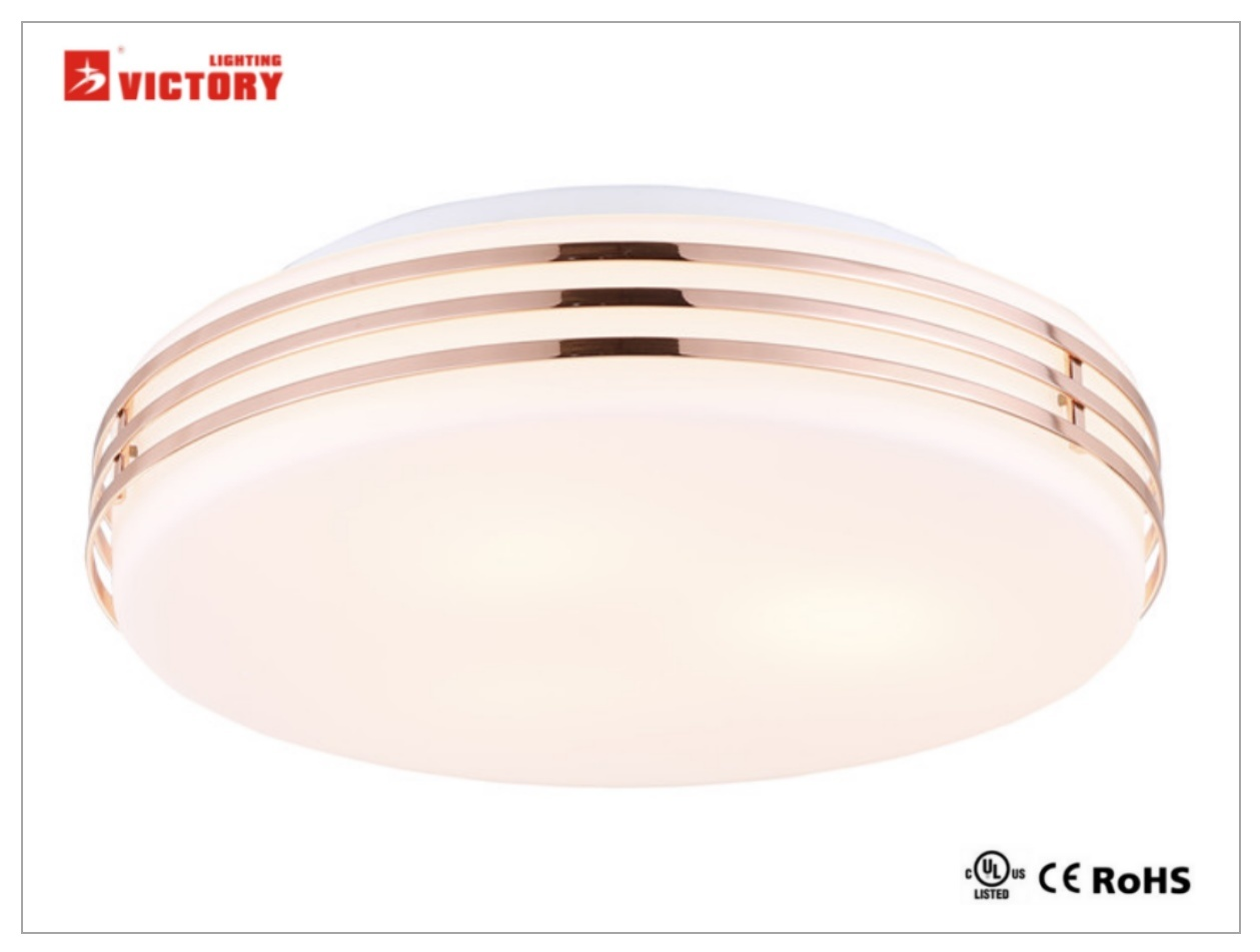 Waterproof Simple Round Home Modern LED 8W Ceiling Light with Opal Glass