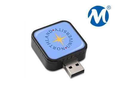 High Speed Promotional Plastic Custom USB Flash Drive (CMT-SY046)