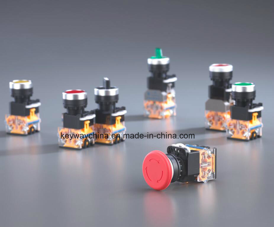 Keyway Push Button Switch with Red and Green Colors