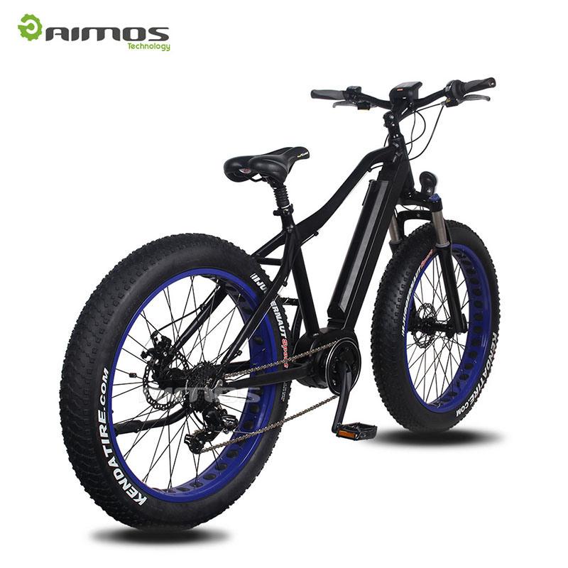26′′ 36V 250W Hidden Battery MID Drive Motor Electric Bike