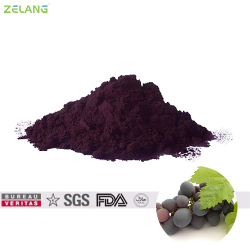 Cold Water Soluble Powdered E20 Grape Skin Color