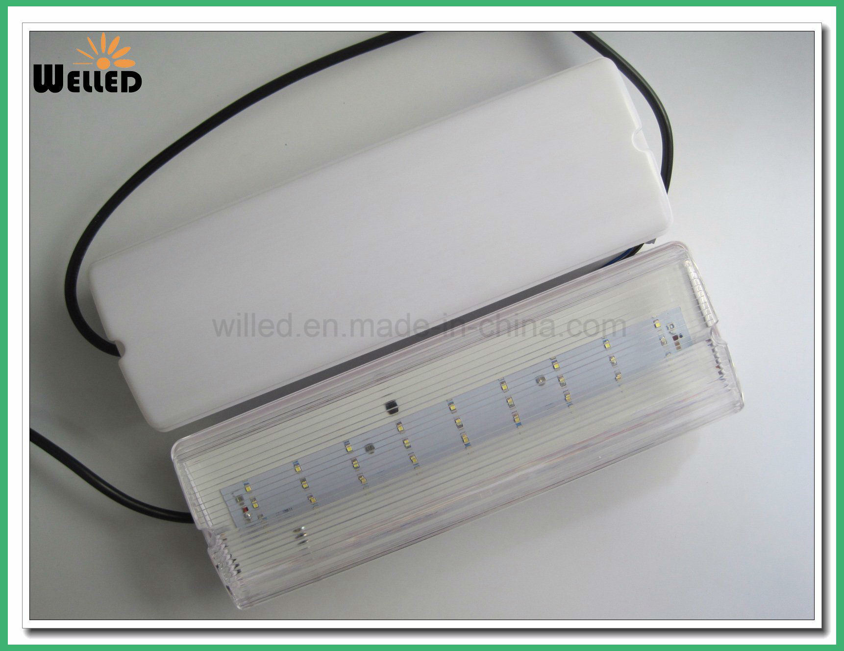 Maintained LED Emergency Bulkhead Light 8W/8W