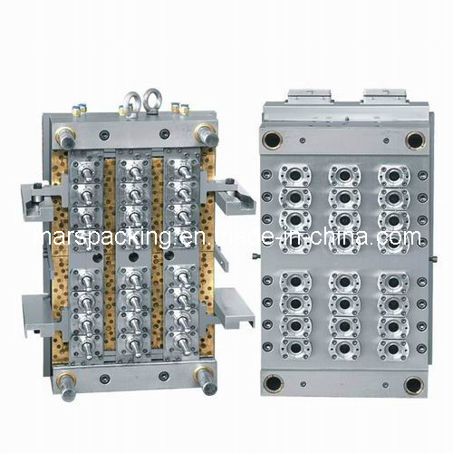 Pet Plastic Mould Manufacturer in China (MA-1)