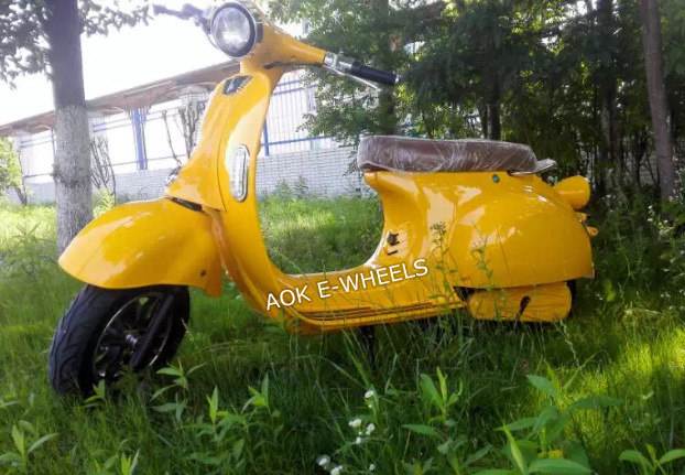 1000W Disk Brake Electric Pedal Motorcycle (EM-006)