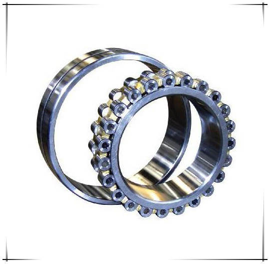 SKF Timken Double Steel Auto Parts Roller Bearing (N220)