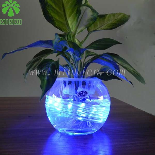 Decorative Light Strings China Led Aquariums Light Led Light