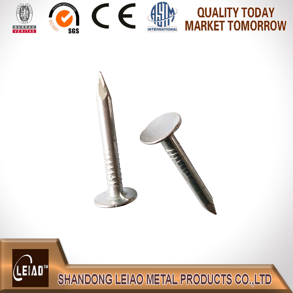 Best Quality Galvanized Clout Nail