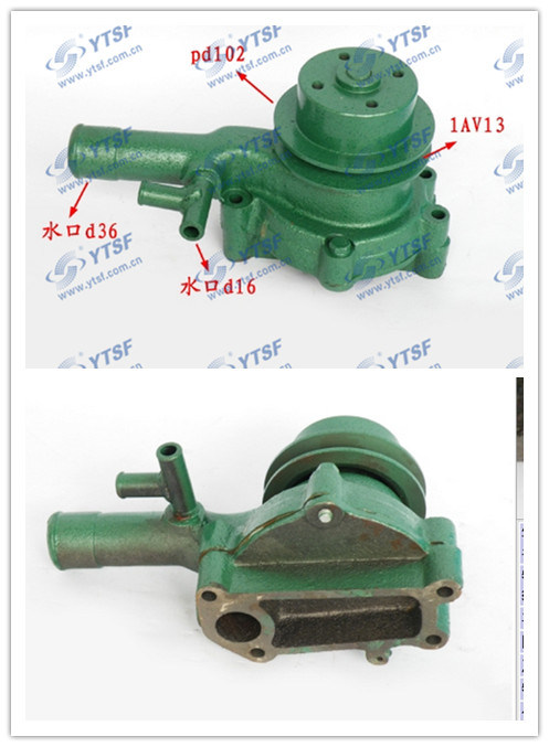 Water Pump/Foton Pump/Auto Parts