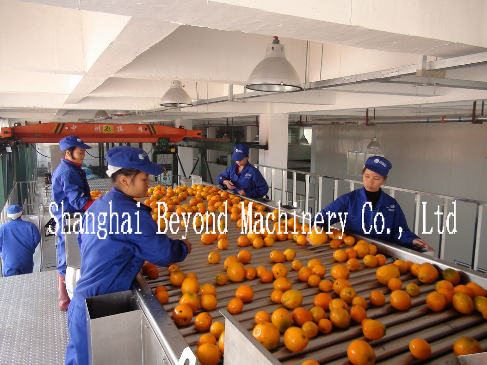5t/H Concentrated Fruit Juice Production Line