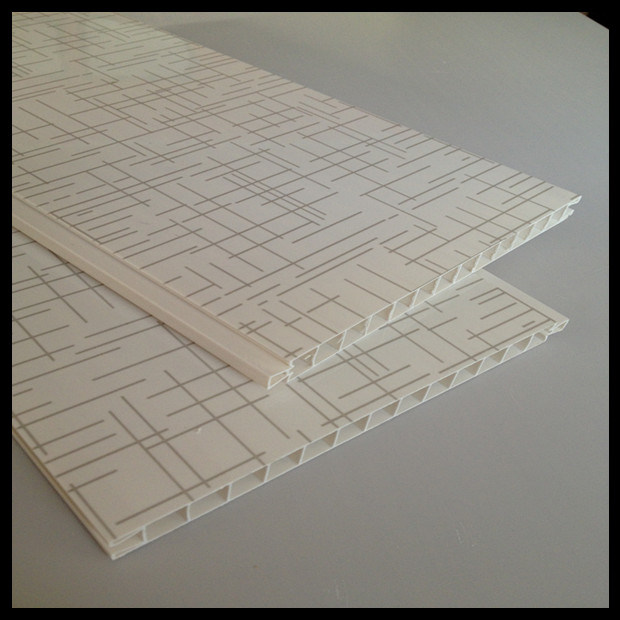 2014 Newest PVC Panel for Door (HN-D001)